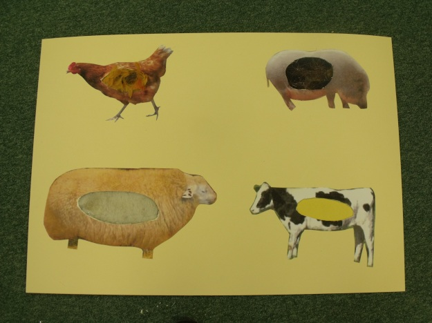 Sensory animal texture panels